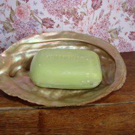 Abalone schelp parelmoer
